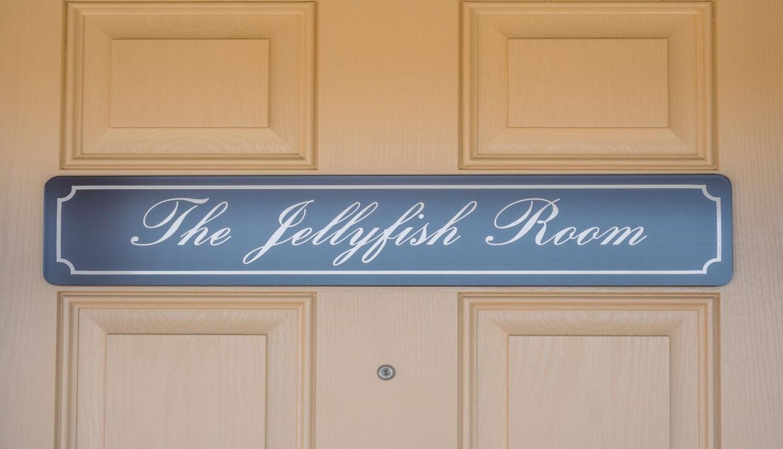 The Jellyfish Room
