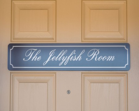 The Jellyfish Room